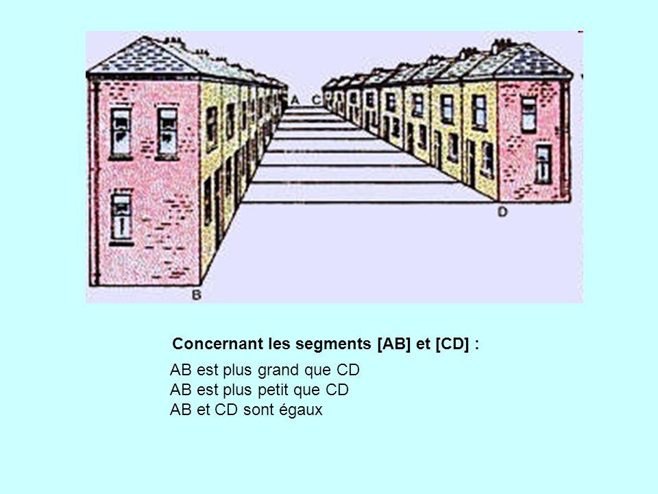 Concernant les segments [AB] et [CD] :